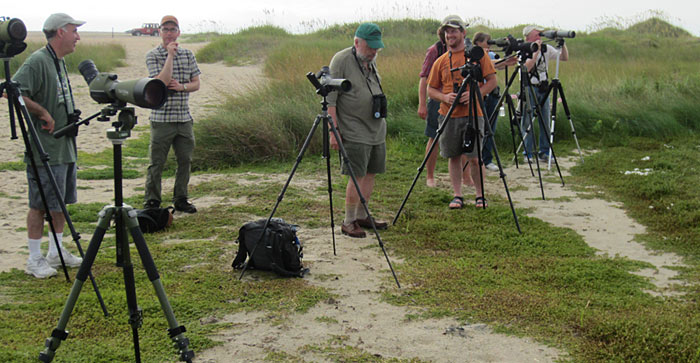Part of the PSO Group birding Hatteras Photo by Andy McGann