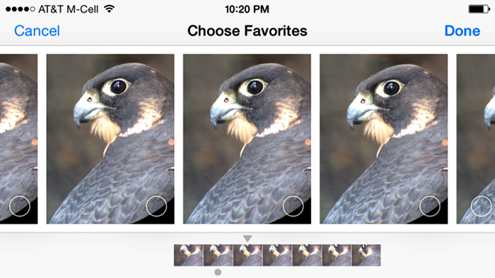 In burst mode a single image shows that represents that set, you can go in later and select your favorites from that set.