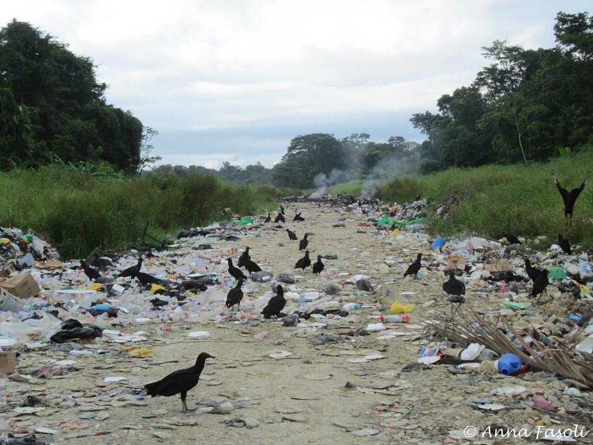 111314 PG dump Belize 03