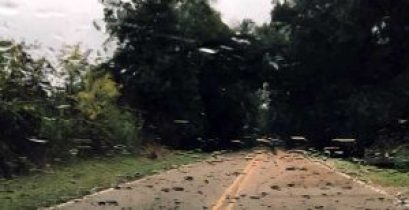 New Albany MS Davis Road deaths examine your priorities