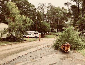 New Albany ms thunderstorm damage