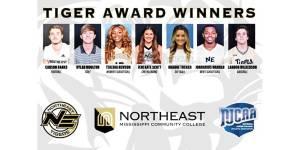 NEMiss.news NEMCC Tiger Award