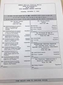 NEMiss.news Sample electoral ballot