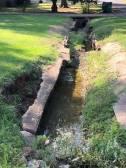 NEMiss.News S. Acre drainage problems