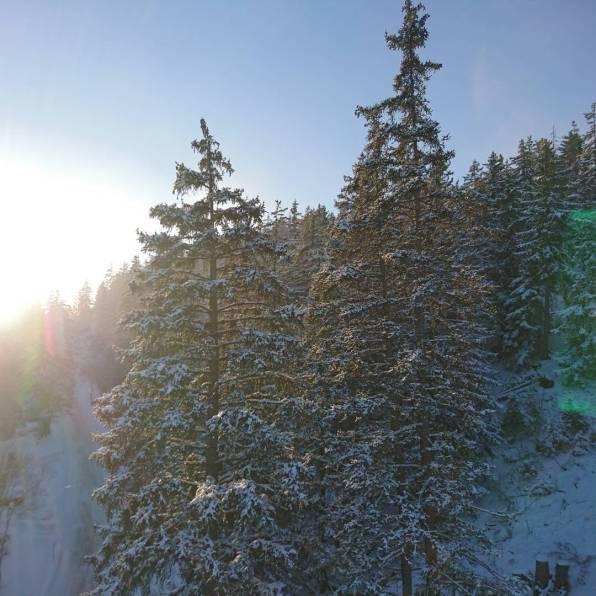 #unpeuplushiver #montana #frisek