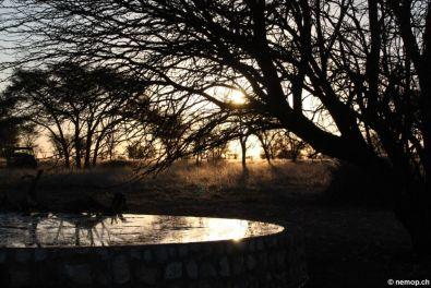 namibia-26