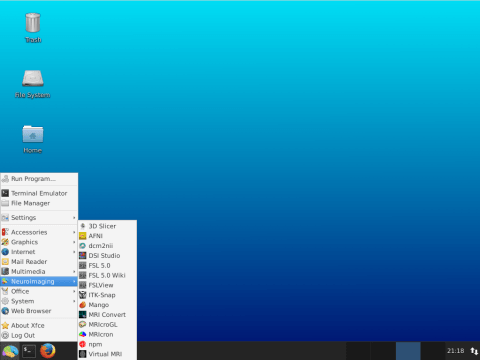L4N-xenial-screenshot