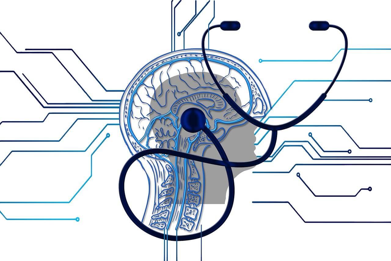 brain 4381325 1280 1