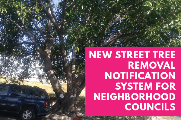 New-Street-Tree-Removal-Notification-System-for-NCs