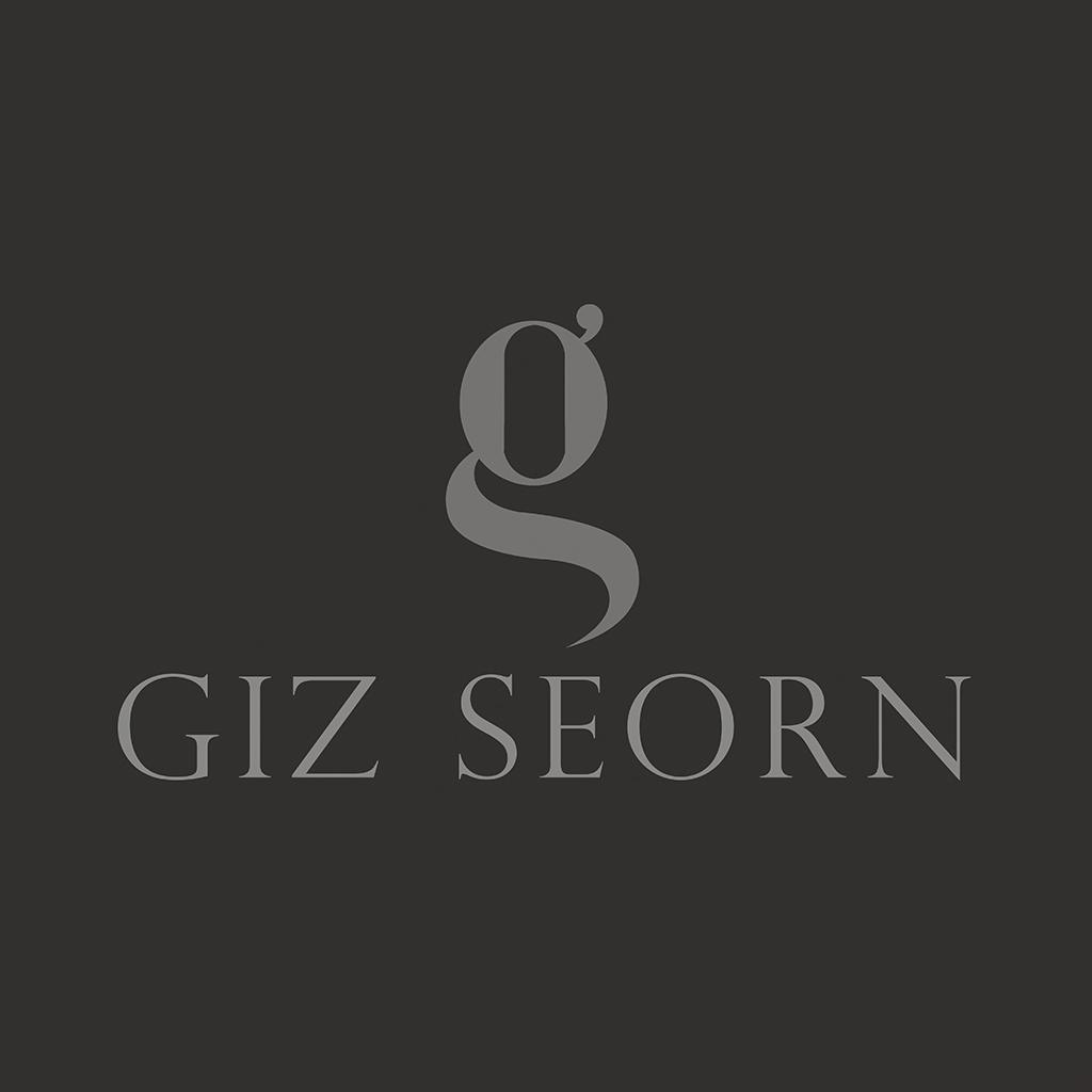 giz-seorn-logo