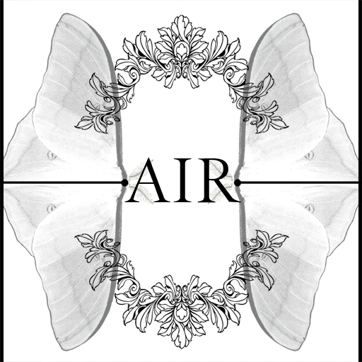 air_logo2white_512