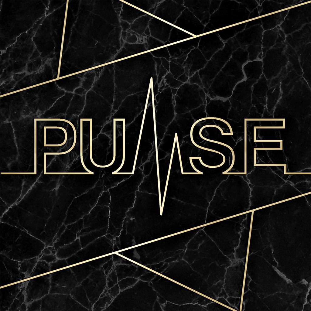 pulse-bg-logo-black-1024