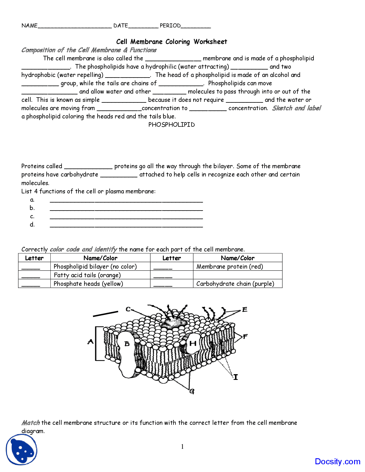 Biology Junction Worksheet Answers