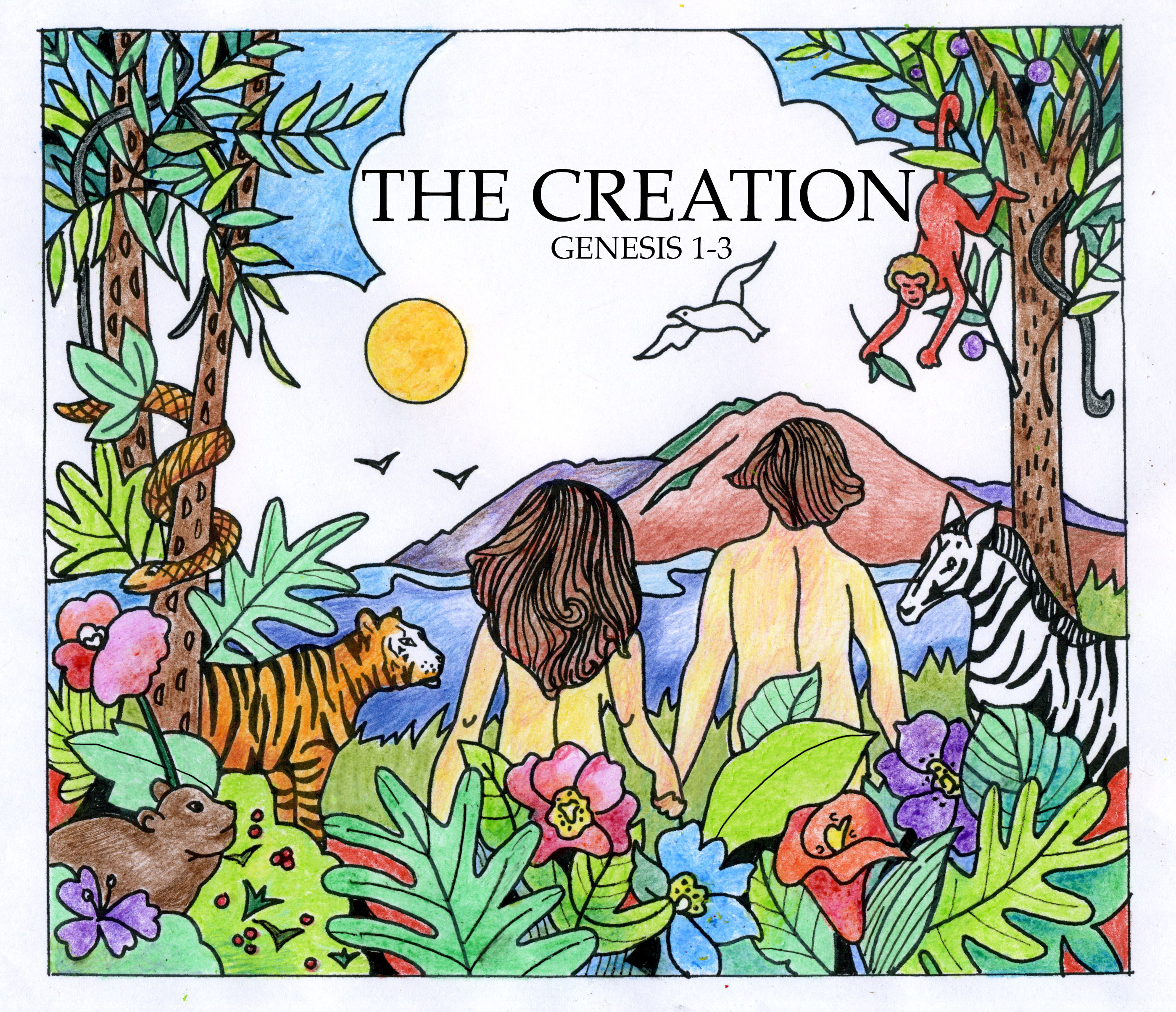 Bible Creation Pictures