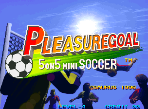 Pleasuregoal 5on5 mini Soccer / Futsal
