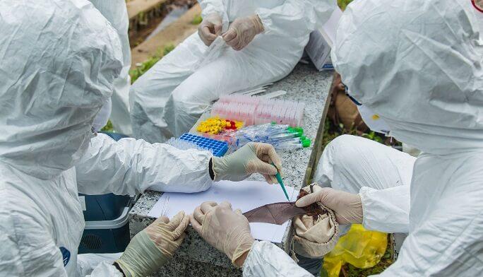 investigadores coronavirus china