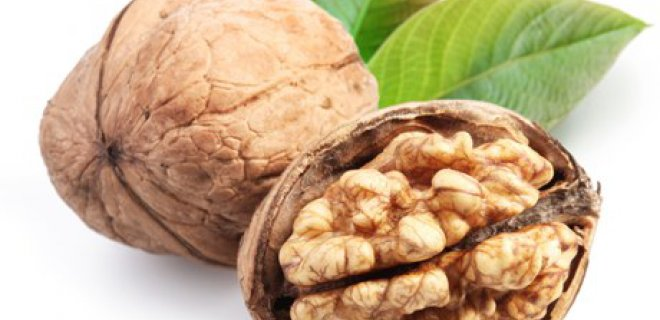 ceviz 006 - The Benefits Of Walnut Oil