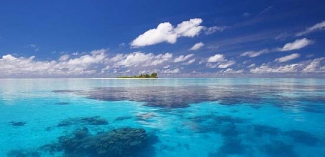 deniz suyu - The Miracle Of Sea Water