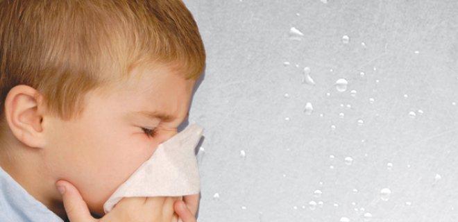 hapsirmak - Why Do We Sneeze?
