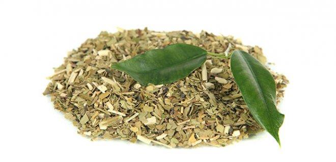 mate cayi - The Benefits Of Mate Tea