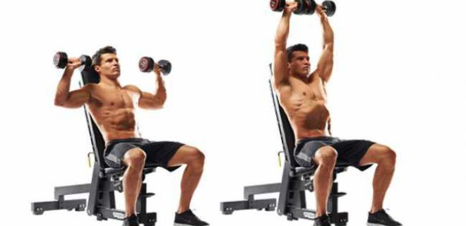 seated press - Best Shoulder Muscle Exercises