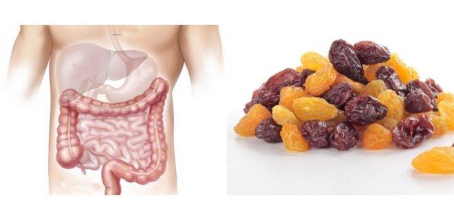sindirim sistemi 008 - Benefits Of Raisins