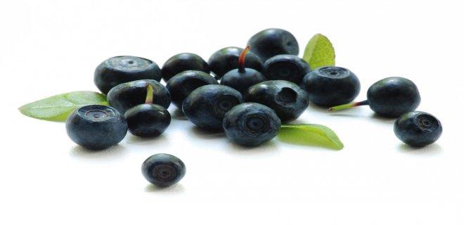 wild-blueberry
