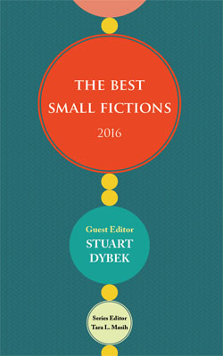 "The cover of the ""Best Small Fictions 2016"" anthology."