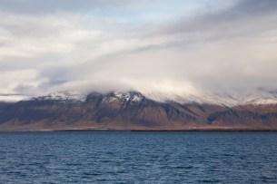 Reykjavik Shore