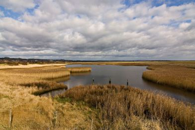 Farlington Marshes
