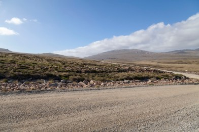 Estancia, Falkland Islands