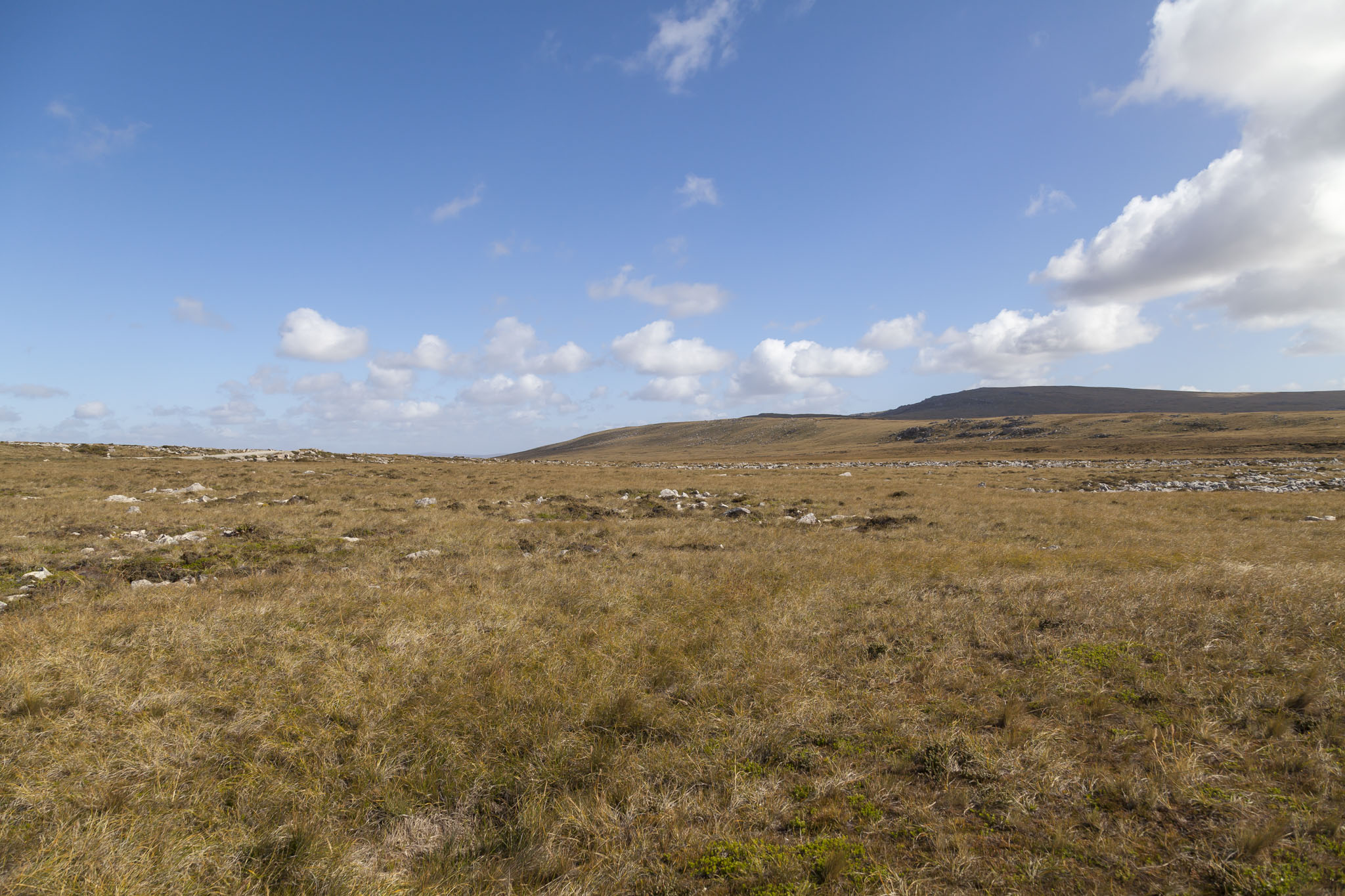 Falklands, Mount Kent, Chinook Helicopter