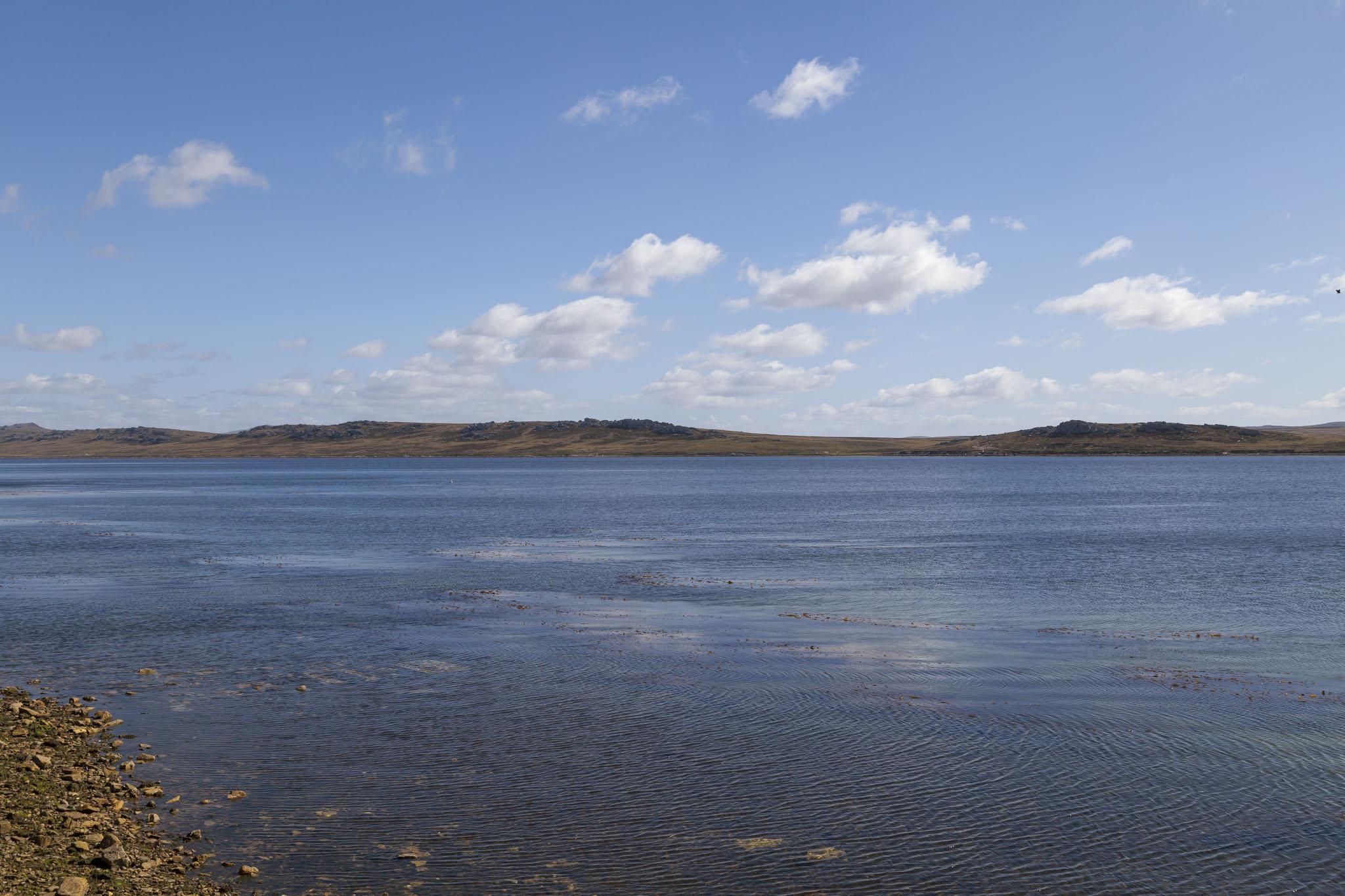 Stanley Harbour, Falkland Islands