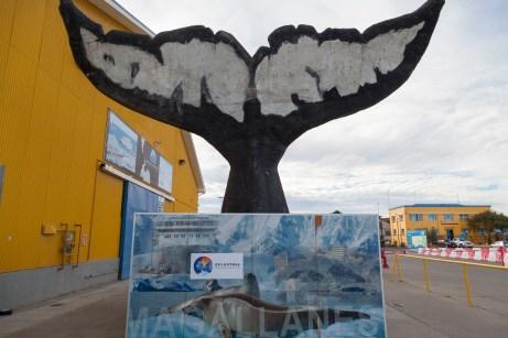Punta Arenas Dock