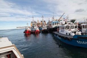 Punta Arenas Dock, Tender Boat