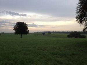 A Florida Sunrise