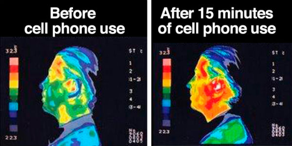 according to new research from the weizmann institute of science in israel certain cellphones may be exposing us to harmful levels of electromagnetic