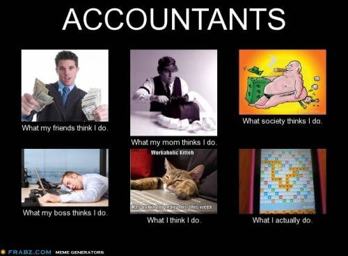 what-my-friends-think-i-do-what-i-actually-do-accountants-500x368
