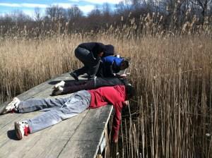 2013-04-03_students in marsh