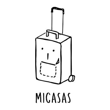 Convenzioni Neovision: MICASAS