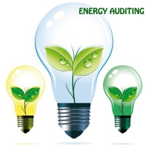 ENERGY-AUDITING
