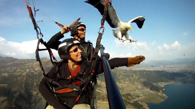 Parahawking in Nepal