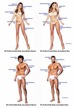 What does perfect female and male body look like?