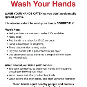 Fair Visitor Poster: Washing Hands