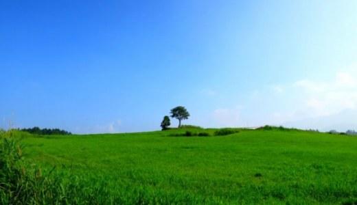 【雑感】夏旅:野辺山高原にいらっしゃい