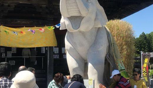 休日おでかけパスで茂原へ。長福寿寺で「願いを叶える吉ゾウくん」に会ってきました【旅ブログ】