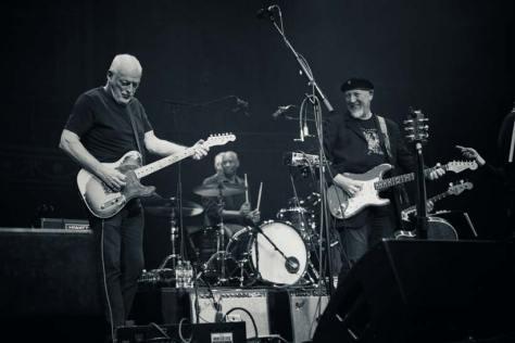 David Gilmour with Richard Thompson at the Royal Albert Hall September 2019