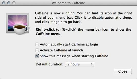 caffeinie preferences
