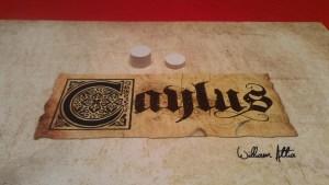 Caylus 5