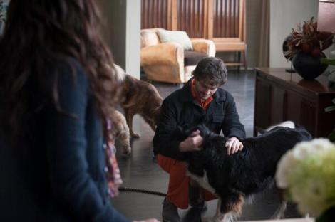 "Actually, his first stop is to see Alana and his dogs. (But mostly his dogs, probably.) This is a deleted scene that Bryan Fuller said will show up in the special features of the Season One box set. Interestingly, enough, though, Hannibal references it in a scene left in the episode where Hannibal tells him that he scared her and Will says that she is ""confused about who I am."" Sorry. BRB. CRYING."